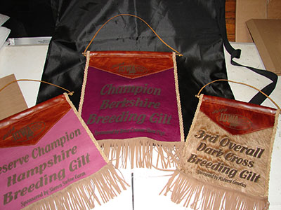Banners Bags And Blankets Signature Signs And Awards